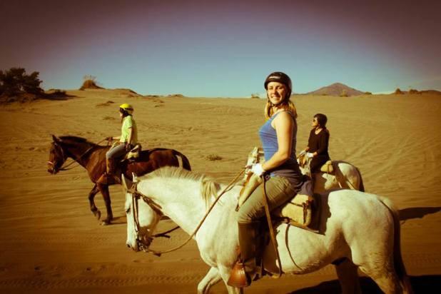 chile-horses-desert