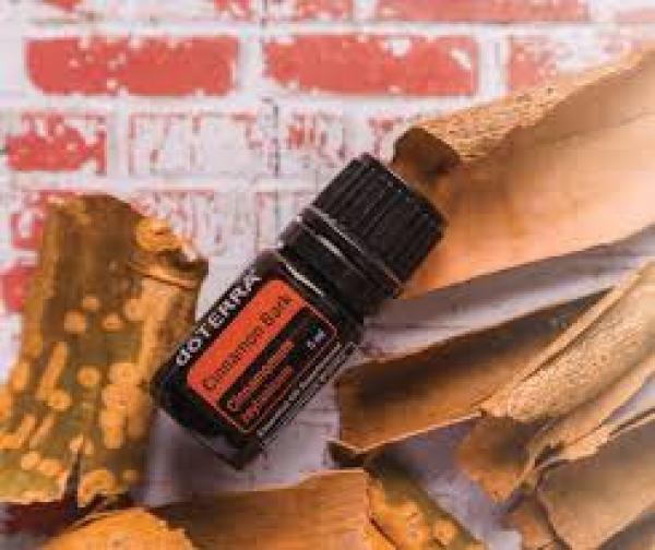 Doterra cinnamon bark