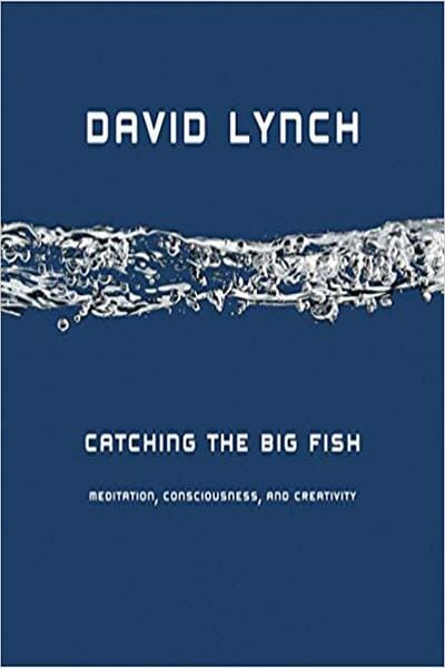 Books similar to Catching the Big Fish by David Lynch (updated 2020) | Good Books
