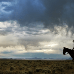 Ride_Rescue_Cowboy_Horse_Silhouette_Leading