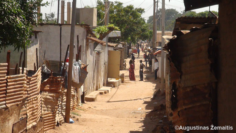 2013 Ivory Population Coast
