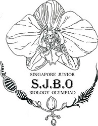 Singapore Olympiad Exams, List of top Olympiad Exams in