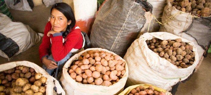 Mulher vende batatas no Peru.