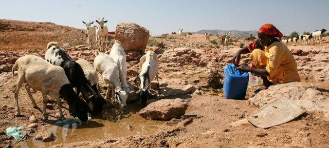 La sequía recurrente y la consiguiente competencia por los recursos han provocado conflictos en Somalia en las últimas décadas.
