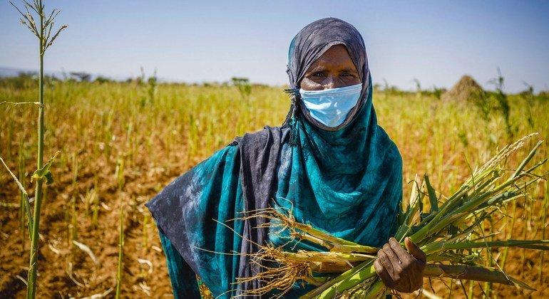 Pandemic threatens lost decade for development, UN report reveals