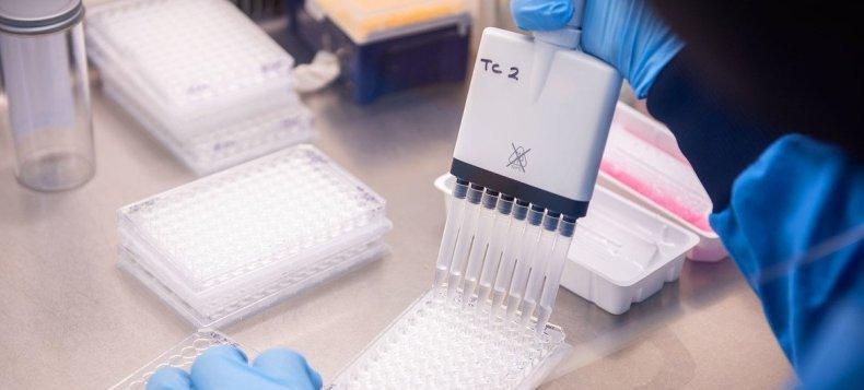 Los científicos del Instituto Jenner de la Universidad de Oxford trabajando en el desarrollo de una vacuna contra el coronavirus.