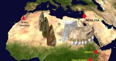 Jawbone fossil found in Israeli cave resets clock for modern human evolution
