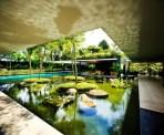 Urban Water Habitats