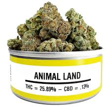 Buy Animal Land online