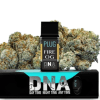 Buy PLUGPlay DNA FireOG Vape 1G Cartridge
