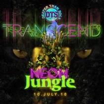 Transend - St Lucia Carnival 2018