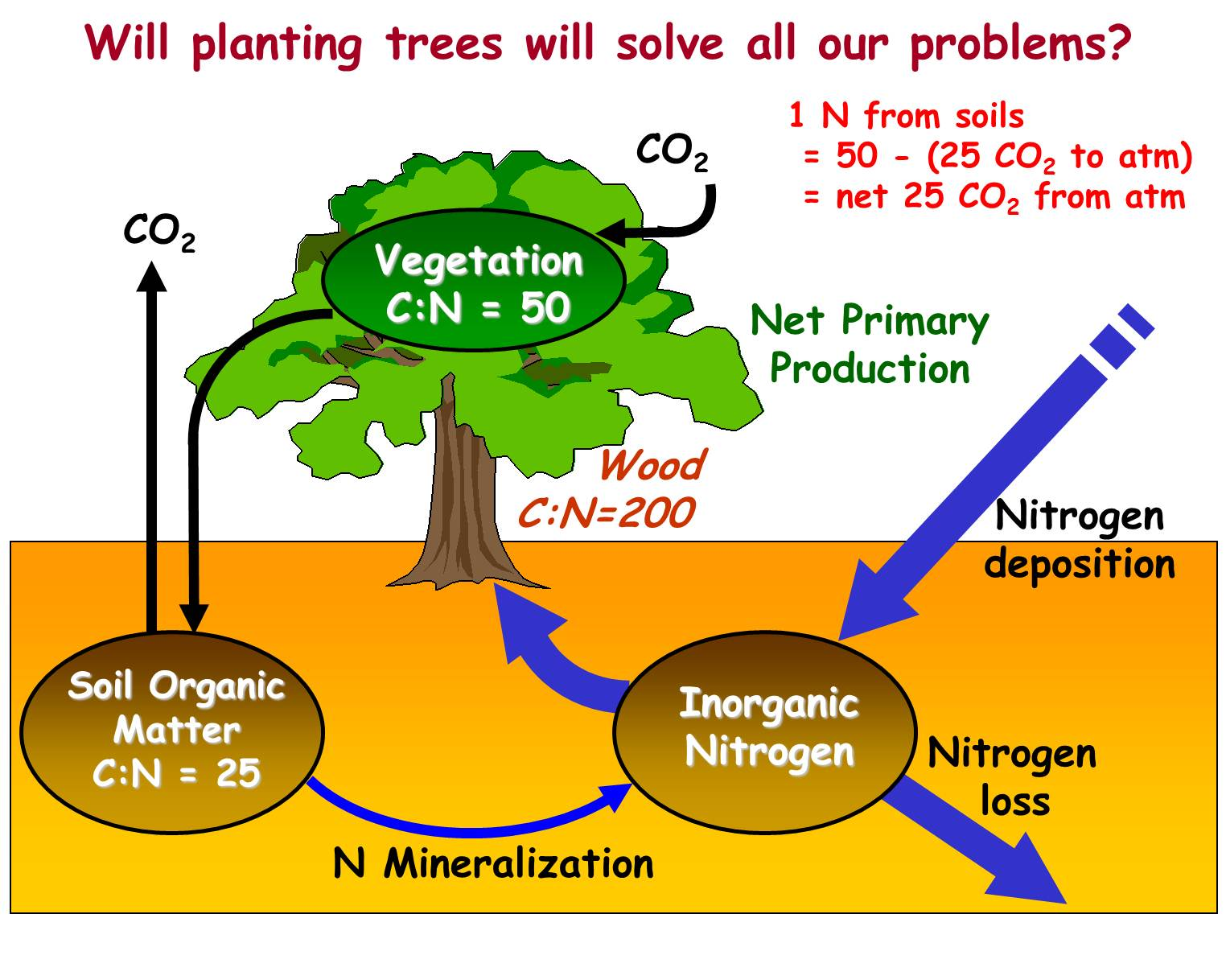 Index Of Globalchange1 Current Lectures Kling Nitrogen Cycle