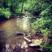 Rachel Carson Conservation Park in Olney, Maryland