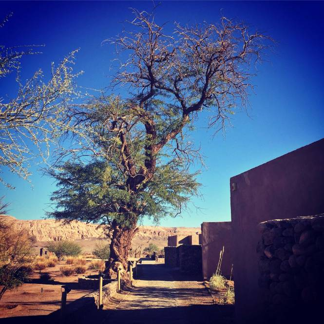 Atacama Desert San Pedro resort
