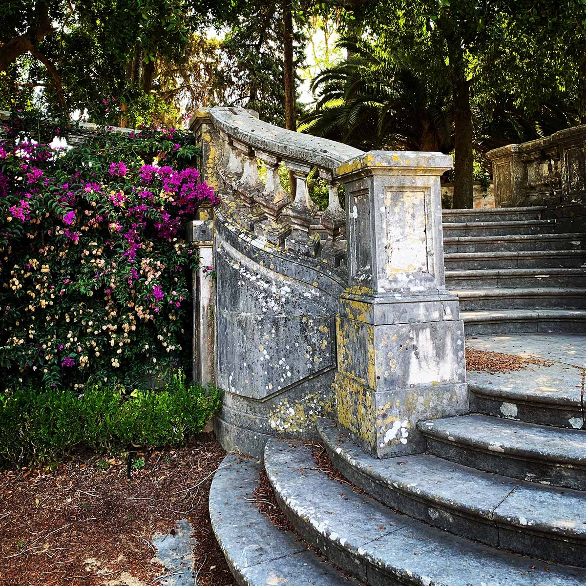 Jardim Botanico da Ajuda stairwell in Belem