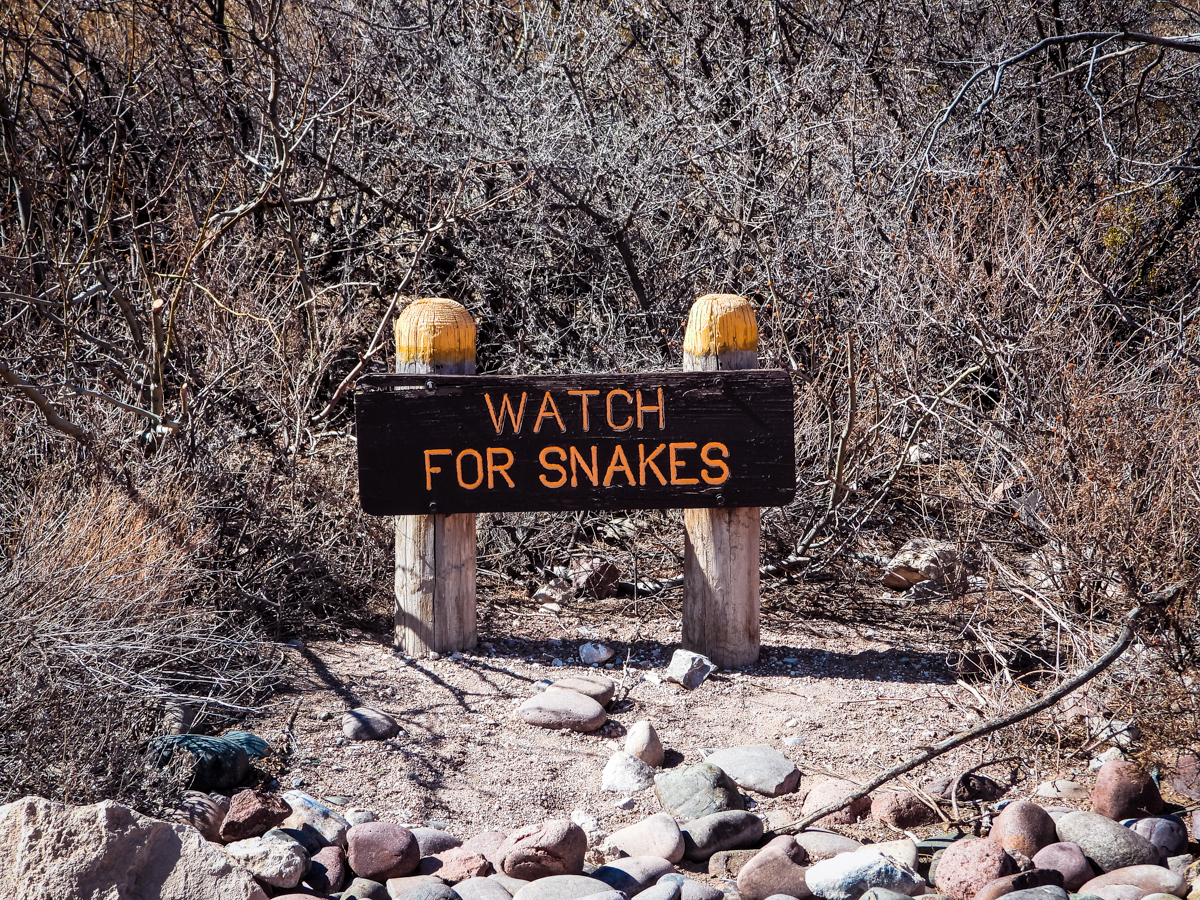 Watch for snakes sign in Franklin Mountains