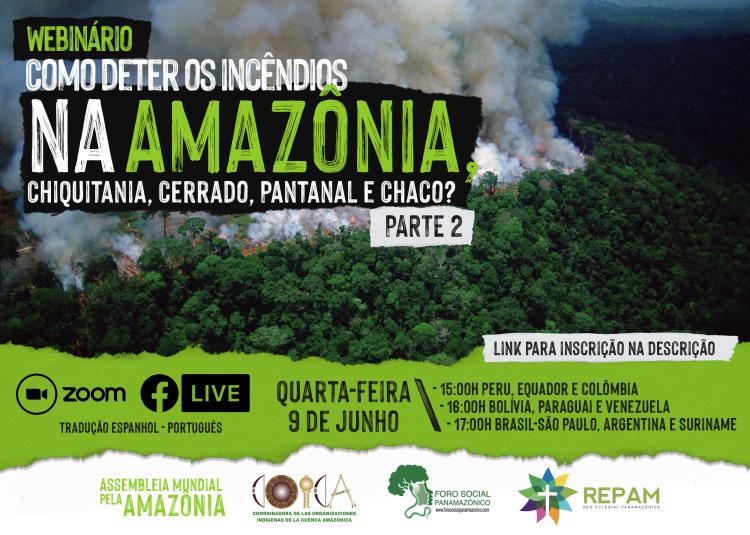 ¿Cómo frenar los incendios en la Amazonía, Chiquitanía, Cerrado, El Pantanal y El Chaco? – parte 2