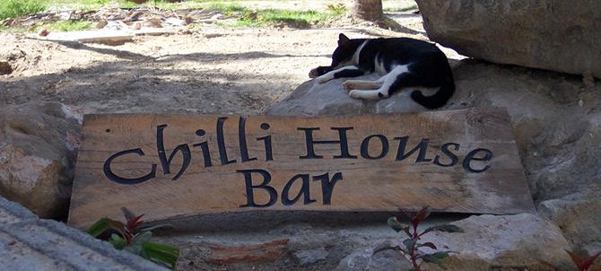 Volunteering at Chilli House, Ko Phi Phi Island