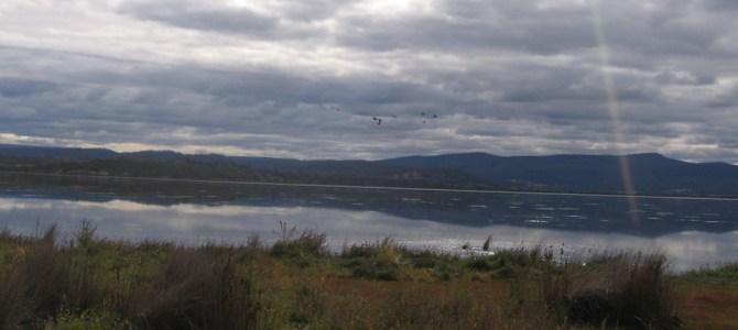 Tasmania: It's Still Raining, Gwenda.
