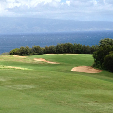 Enjoy a round of golf at Kapalua - The Plantation Course (Just be ready for the sticker price!)