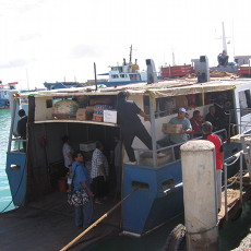 Ferries in Tonga are a life experience. Try it at least once.