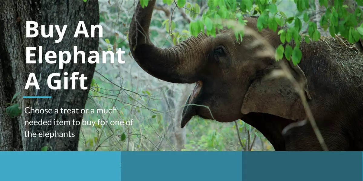 Elephant wishlist graphic