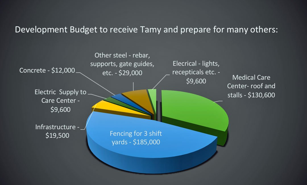 Developmental Budget Phase III