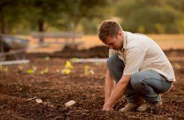 home plantant camisa blanca durant el dia