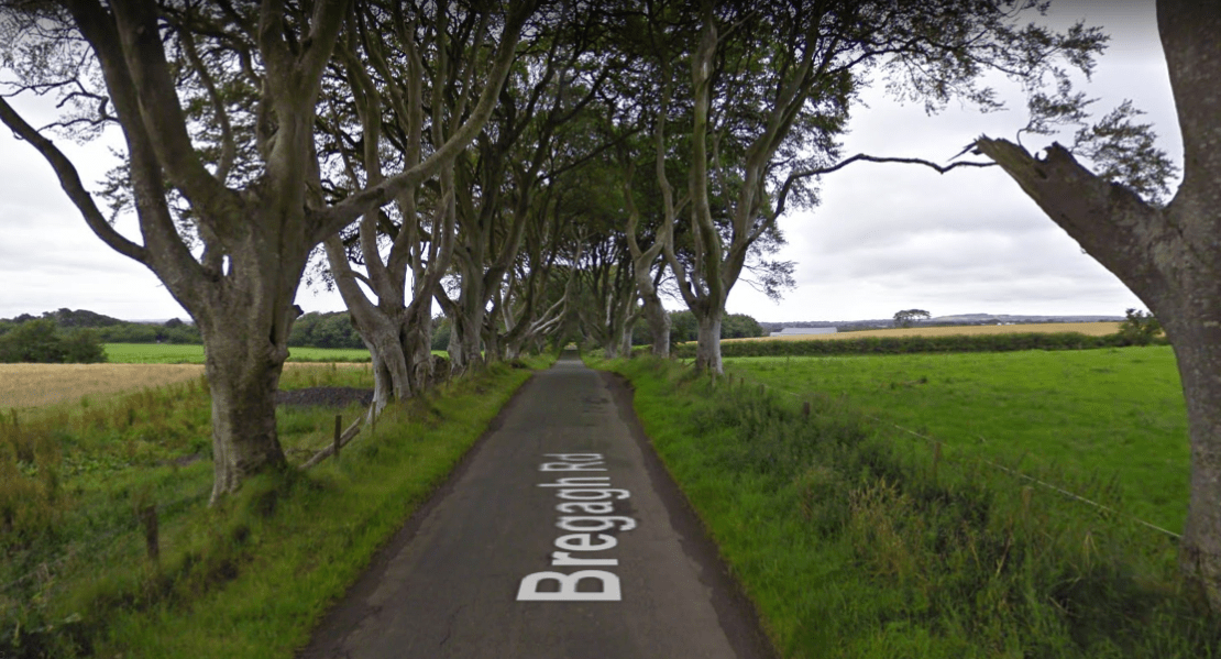 dark-hedges-game-of-thrones.PNG