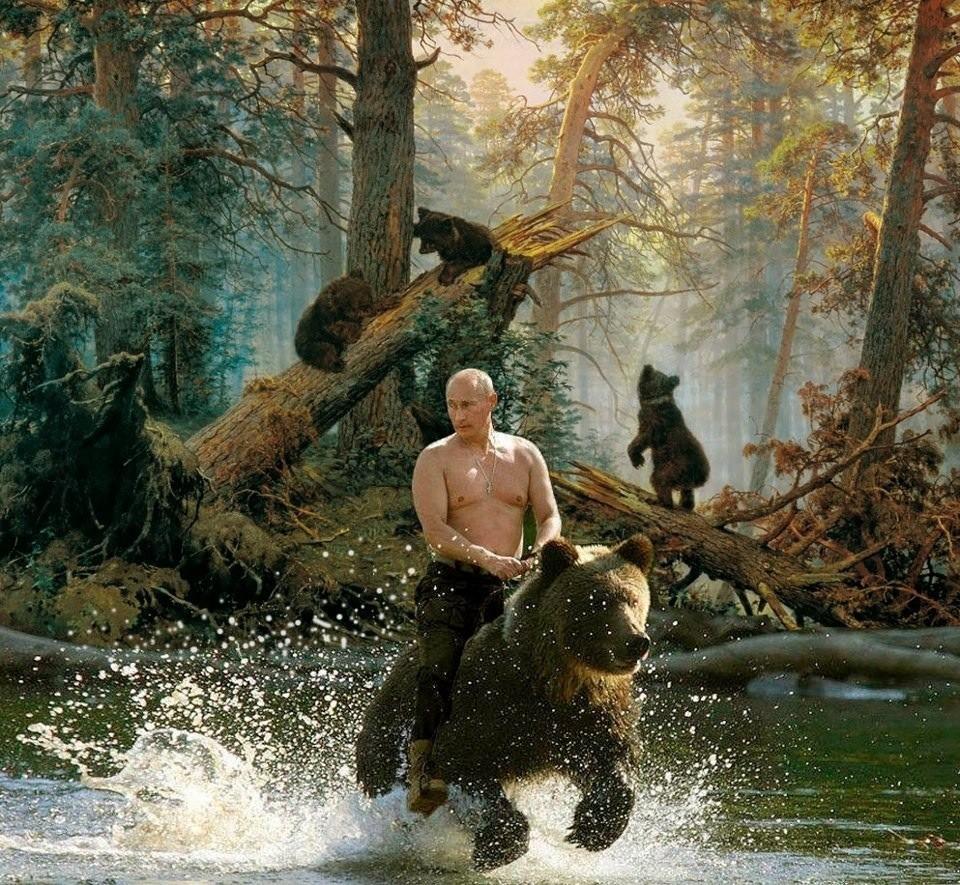 Vladimir Putin 2016 Calendar Notestoponder