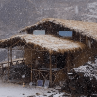 Chopta: Rhododendron Forest Mud House