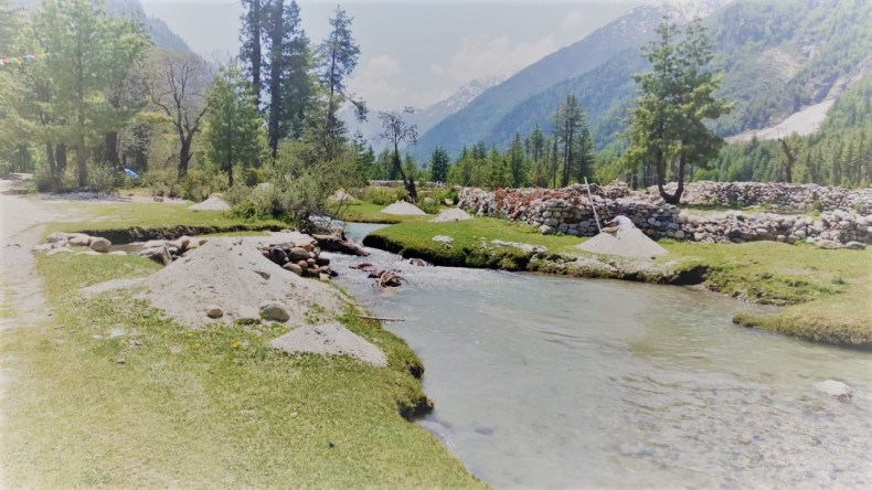 Rakcham - Himachal Pradesh Travel Guide -