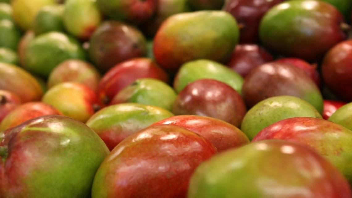 Minz-Mango Ragout
