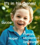 Lucca: 1 in 600 with Phelan-McDermid Syndrome
