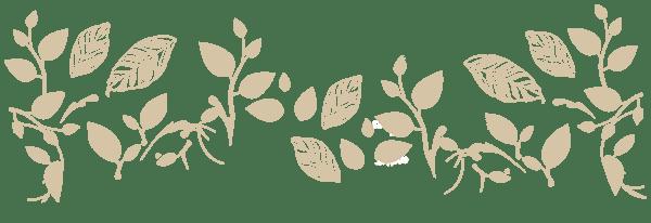 floral-divider