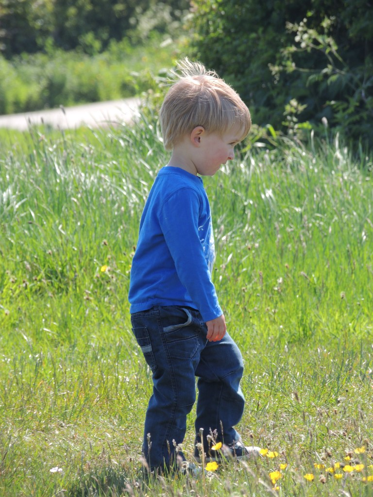 Black Colored Urine How We Discovered Our Son Had Alkaptonuria Aku April 2010 Last Year Very Lively Happy And Healthy Little Boy Was Diagnosed With Also Known As Bone Disease