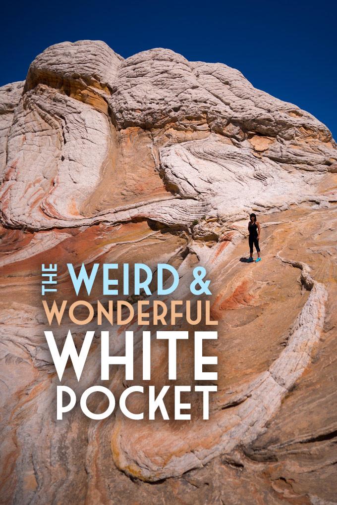 White Pocket Arizona : white, pocket, arizona, Weird, Wonderful, White, Pocket,, Arizona, Global, Travels