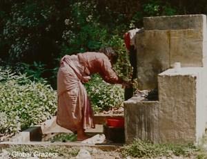 Village Pump, Nepal