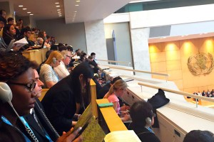 Geneva Practicum: World Health Assembly