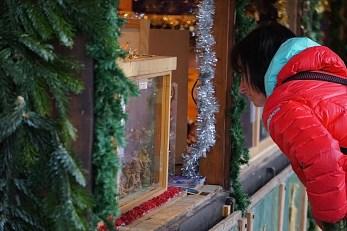 Gazing Nativity