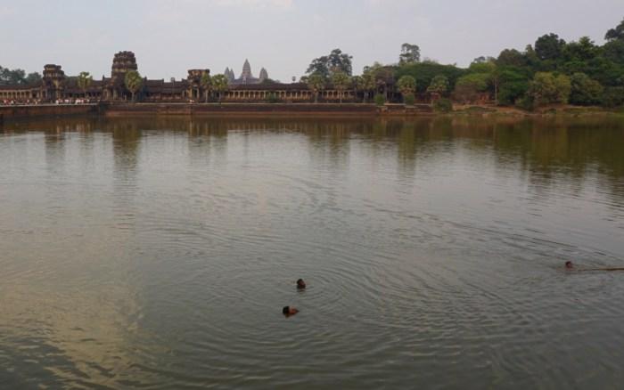 Angkor Wat Swimming