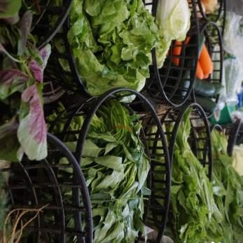 Taiwan Vegetables