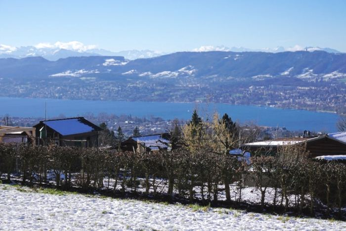 Lake Zurich Winter