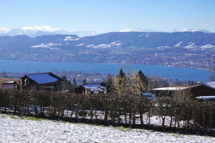Lake Zurich Winter