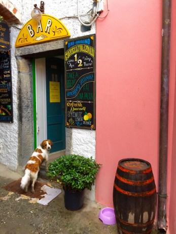 Cinque Terre Bar Stop