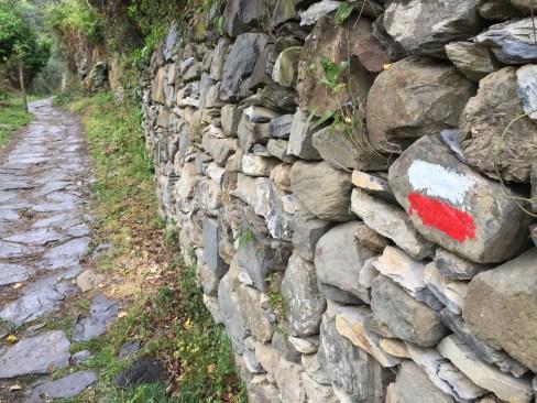 Cinque Terre Hiking Trail