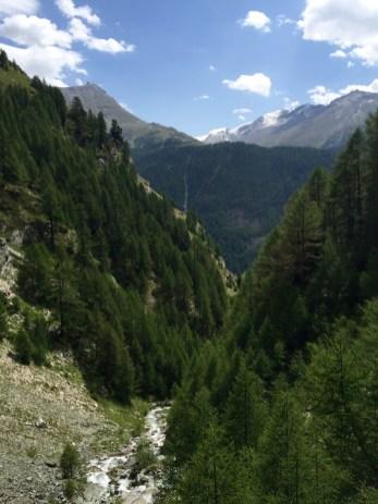Botanischer Lehrpfad Trail Valley