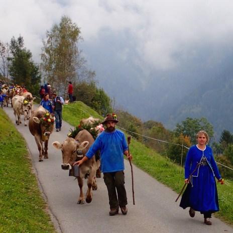 Alpabfahrt Switzerland