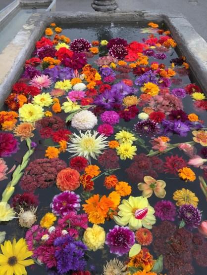 Swiss Flower Fountain