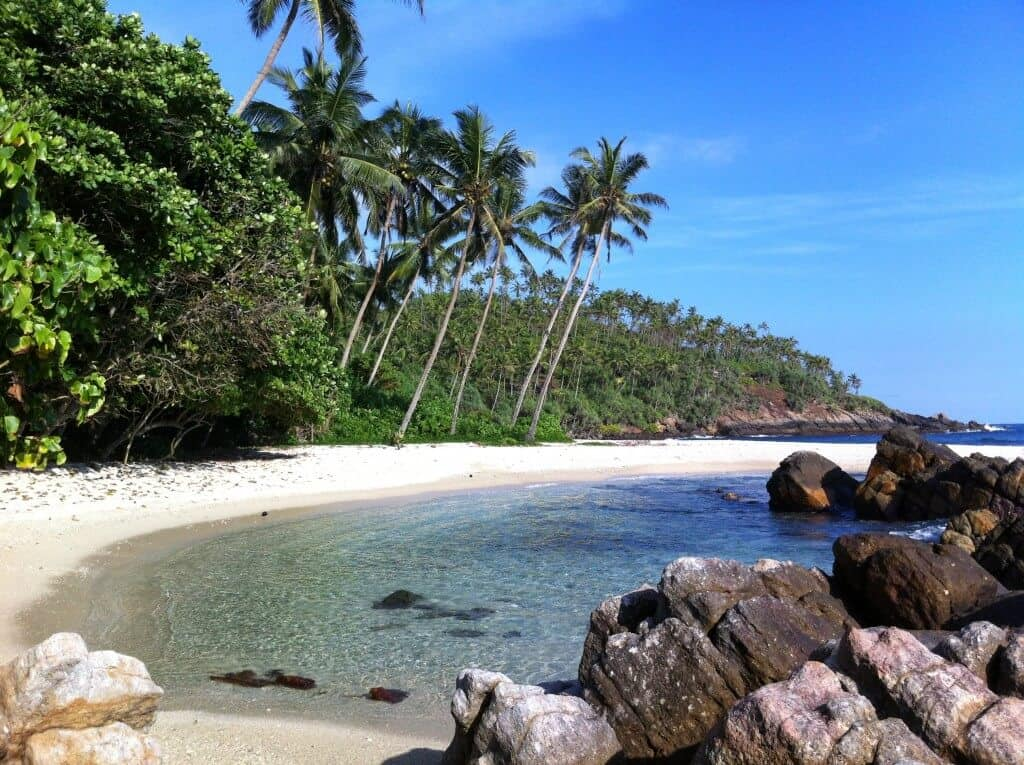 Things To Do In Mirissa Beach Sri Lanka To Make The Most